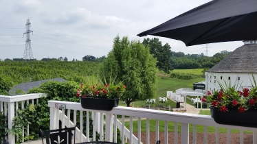Deck at the other barn with hop vine